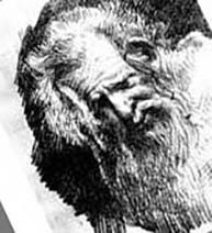 Alexis Deacon | Sketch for Gimli