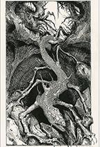 Ian Miller | Lizard