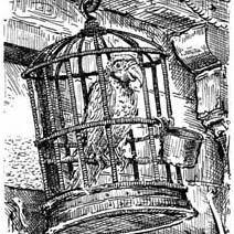 Ian Miller | Long John Silver's Parrot