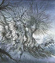 Ian Miller | The Road to Nutwood