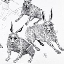 Ian Miller | Rabbits, study sheet 2