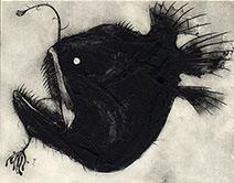 Jim Kay | Angler Fish