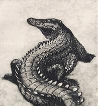 Jim Kay | The Crocodile