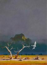 John Harris | A Falcon Flies