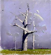 John Harris | The End of Days