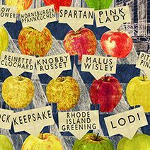 Neil Packer | One of a Kind: Apples